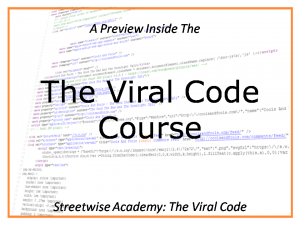 the viral code streetwise publishing ian walsh andi leeman