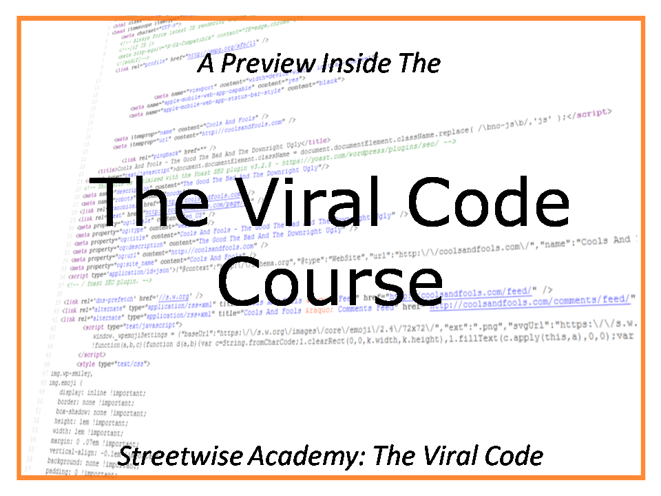 the viral code streetwise publishing ian walsh andi leeman